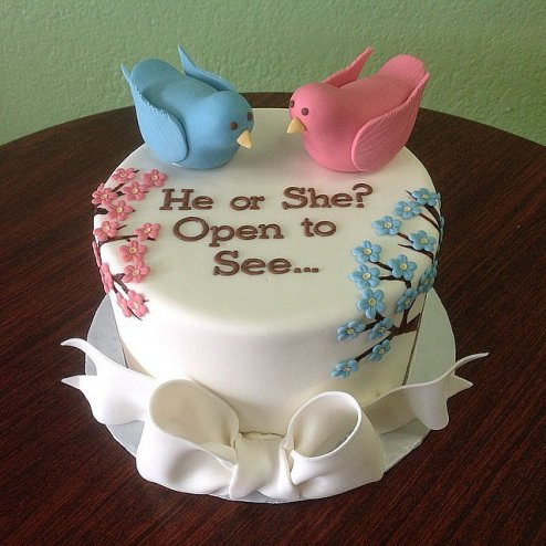 Photo From Pop Sugar http://www.popsugar.com/moms/Gender-Reveal-Party-Cakes-8400213#photo-34623520