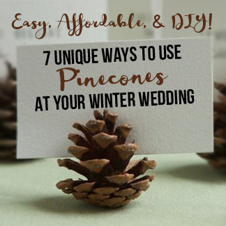 7 Unique Ways to Use Pinecones