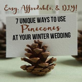 7 Unique Ways to Use Pinecones